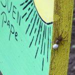 spin op naambord