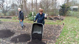 compost-iris-20171206_102228