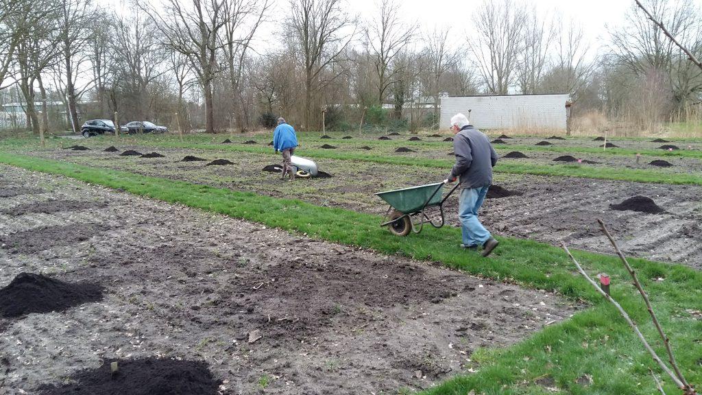 20200212_094743-compost